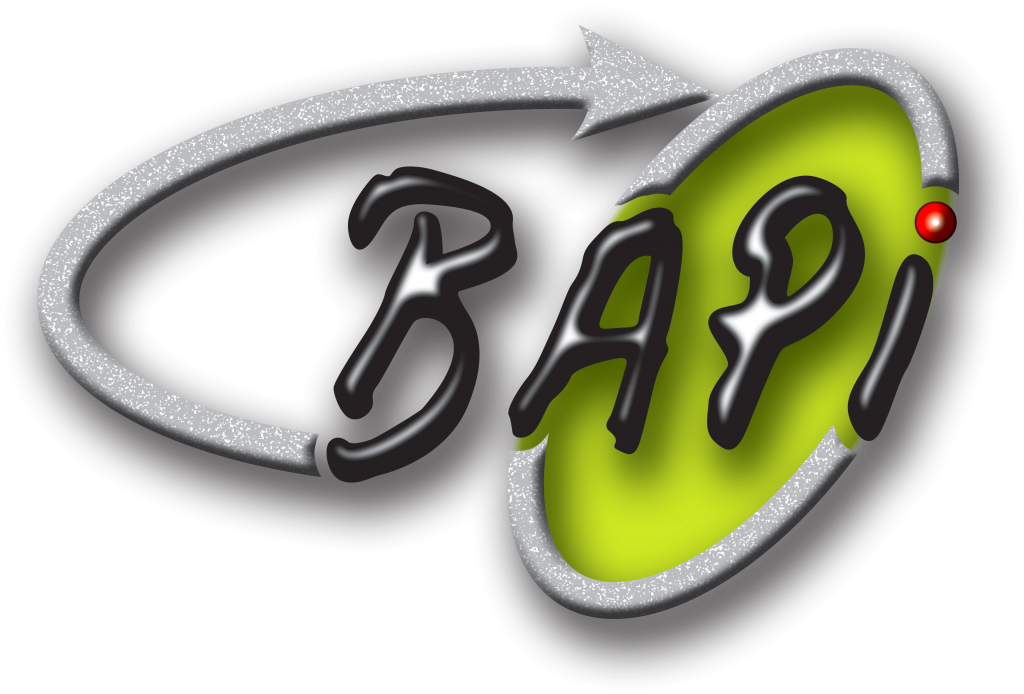 Logo BAPI